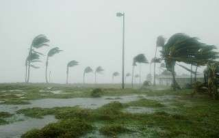 can your solar panels withstand hurricane-force winds?