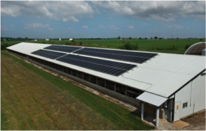 photo of solar array on poultry house
