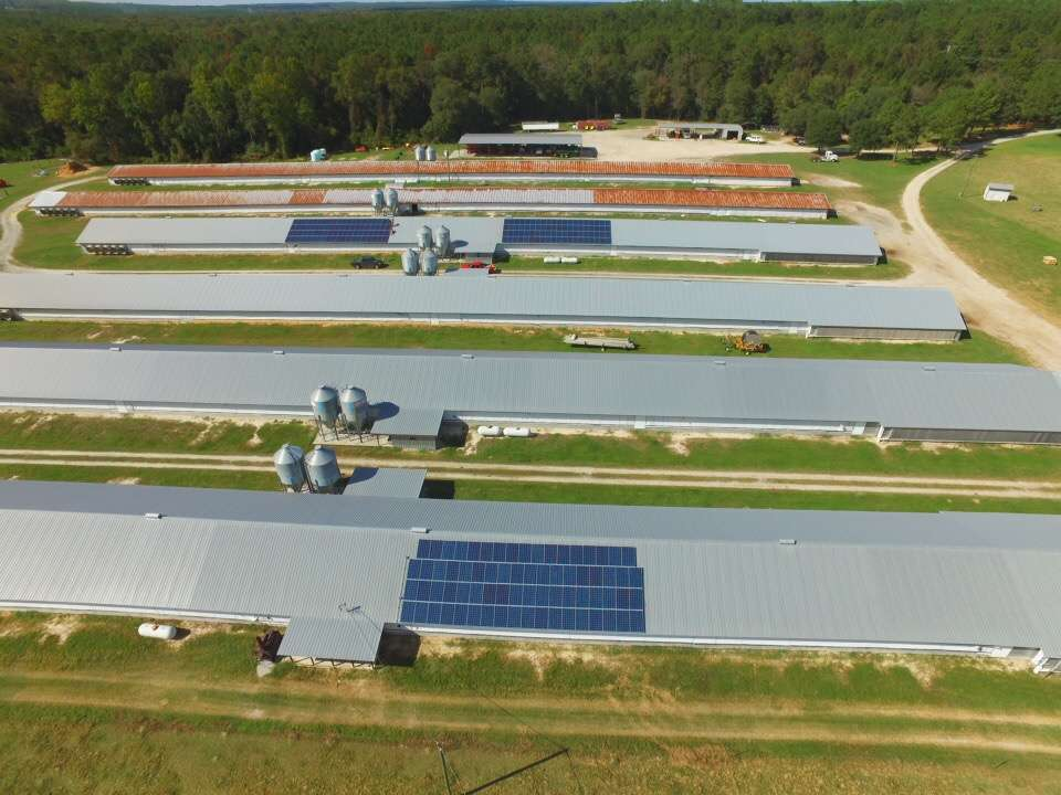 solar panels installed on poultry houses