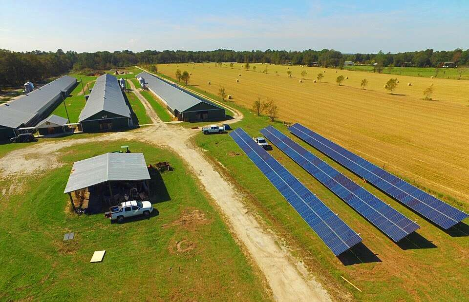 solar panels on a farm in georgia