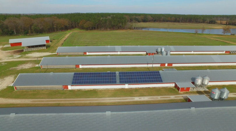 tootle farms solar panels