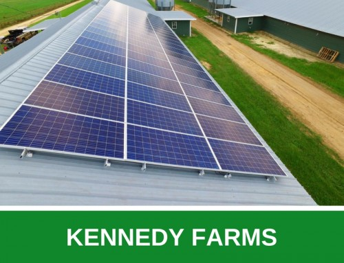 Kennedy Farms