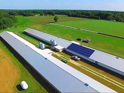 poultry farm using solar energy saves extra money in summer months