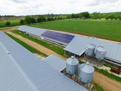 the ITC solar investment tax is ending soon which means poultry farms like this one need to get going on solar installations now