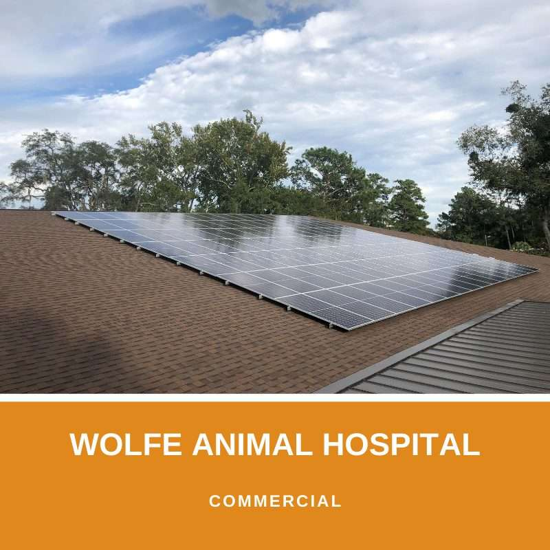 wolfe animal hospital project