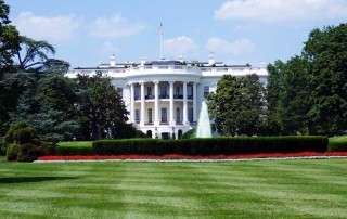 the white house and front lawn
